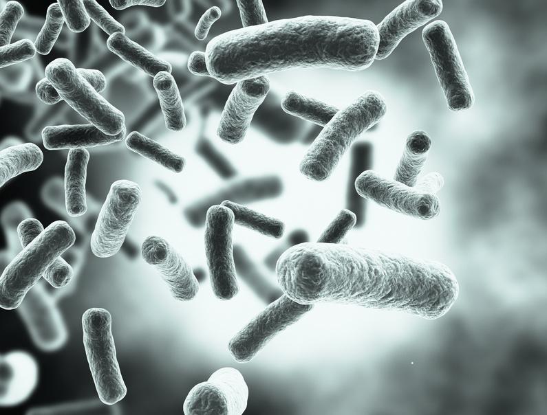 Keime, Gesundheit und was dies <br> mit unserem Immunsystem zu tun hat!?